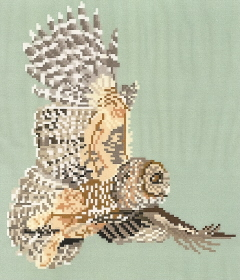 Brenda Franklin BO 101 Northern Spotted Owl. 104 x 122 stitches. Cross Stitch, Petit Point, Needlepoint, Waste Canvas, & Rug Hooking Pattern. .