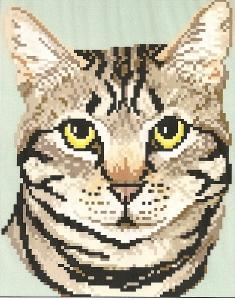 Brenda Franklin CT 301 Tabby-Brown Cat. 78 x 100 stitches. Cross Stitch, Petit Point, Needlepoint, Waste Canvas, & Rug Hooking Pattern.