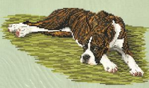 Brenda Franklin DB 1214 Boxer Reclining-Brindle. 158 x 81 stitches. Cross Stitch, Petit Point, Needlepoint, Waste Canvas, & Rug Hooking Pattern.