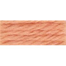 DMC Tapestry Wool 7009 Very Light Rust (Discontinued Colour) Article #486