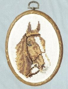Horse With Bridle By Helen Burgess 612