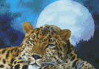 Kustom Krafts 98923 Leopard Moon (X Stitch Pattern Only) designed by Dyan Allaire